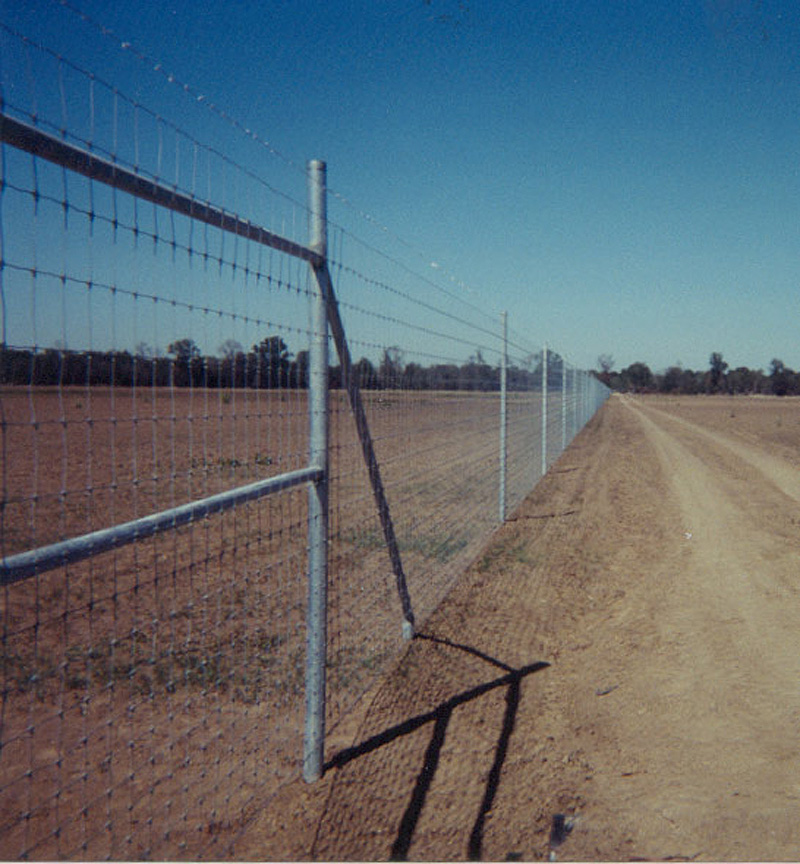 Texas Deer Game Fence, Deer High Fencing, Texas High Fence, Net Wire